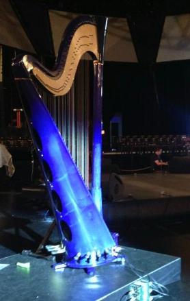 Palm Springs and Palm Desert Harpist